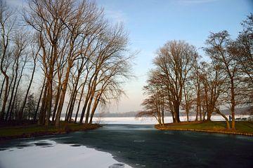 Speiseeis-Pfütze von Merijn Loch