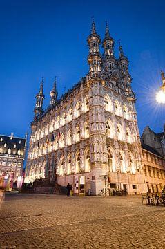 Stadhuis van Leuven van Mark Bolijn