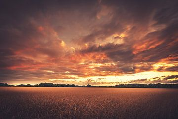 Wolkenhimmel zum Sonnenuntergang