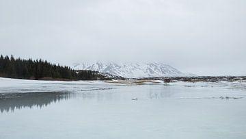 Ijzige schoonheid van een IJslands landschap van Renske Breur