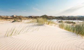 Sandverschiebung in den Dünen von Fotografie Egmond