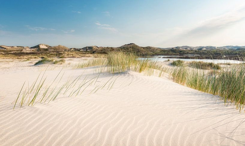 Stuifzand in de duinen van Fotografie Egmond