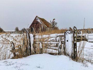Boet in de sneeuw van Lisette LisetteOpTexel