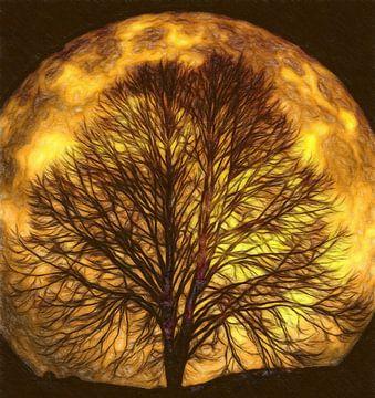 Der Mond leuchtet durch die Bäume