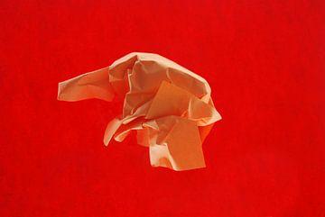 rood oranje van Brigitte van Ark