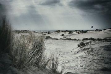 beach lover van Karin vanBijleveltFotografie
