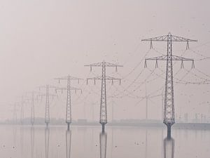 Electricity The Poles