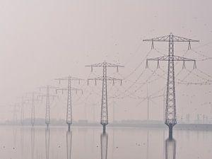 Electricity The Poles van