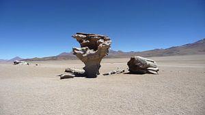 'Door de eeuwen', Bolivia
