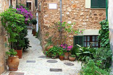 Patio rustiek dorp, Mallorca van Inge Hogenbijl