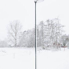De eenzame sneeuwpaal, 2017 van Sander van der Veen