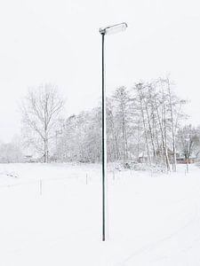 De eenzame sneeuwpaal, 2017