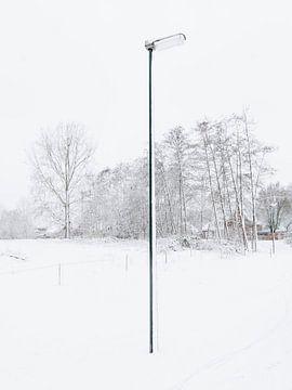 The Lonely Snowpole von Sander van der Veen