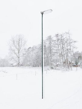 The Lonely Snowpole sur Sander van der Veen