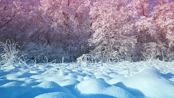 Winterlandschaft von BVpix