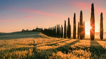Zonsopkomst Poggio Covili, Toscane van Henk Meijer Photography