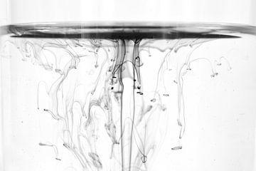 inkt zwart-wit van Manon Sloetjes