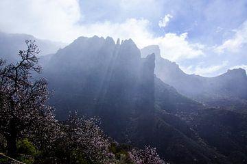 Gran Canaria van Fotostudio Freiraum