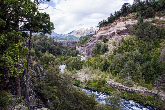 Parque Nacional Conguillio van Eriks Photoshop by Erik Heuver