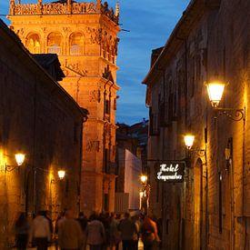 Oude stad, schemering, kerk, straat, Salamanca, Spanje, Europa van Torsten Krüger