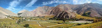 Panorama der Berge, Weinberge und des Obstanbaus im Valle de Elqui bei La Serena in der Region Coqui von A. Hendriks