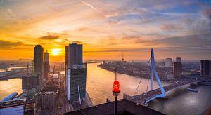 Skyline Rotterdam vanaf de Maastoren van