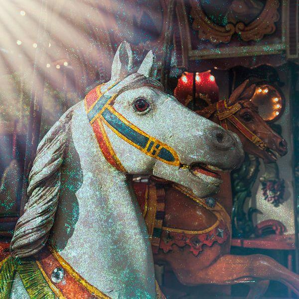 Crazy Horses van Elly van Veen