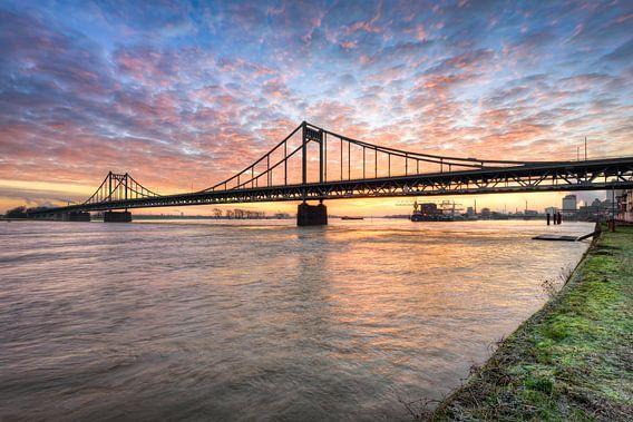 Krefeld-Uerdinger Rijnbrug bij zonsopgang