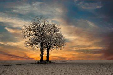 Zonsopkomst bij een winters landschap. van