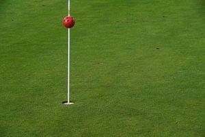 Golf green hole