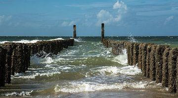 Niederlande Nordsee. von Leo Langen