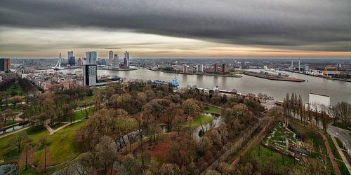 Rotterdam in vogelvlucht