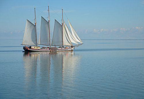 Sailboat on IJsselmeer