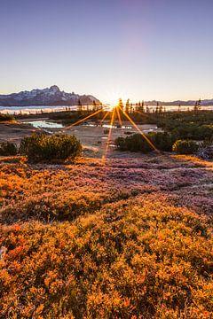 Gouden zonsopgang in de bergen van