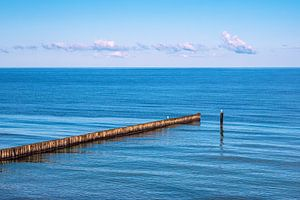 Buhnen an der Küste der Ostsee in Nienhagen