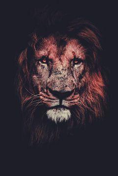 Portrait de lion sur Hendrik Jonkman