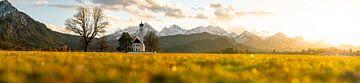 Panoramisch uitzicht vanaf de St. Coleman kapel over de Allgäuer Alpen van Leo Schindzielorz