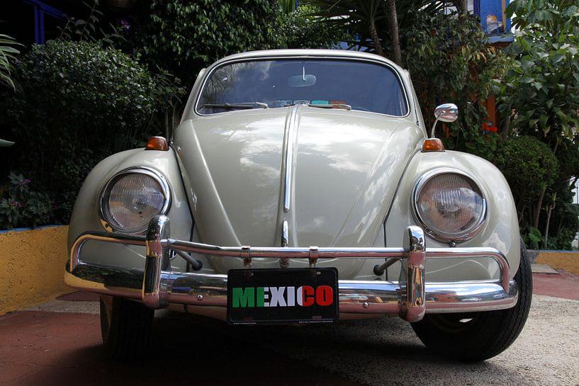 Mexico van Antwan Janssen