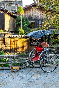Risksja in Kyoto van Mickéle Godderis