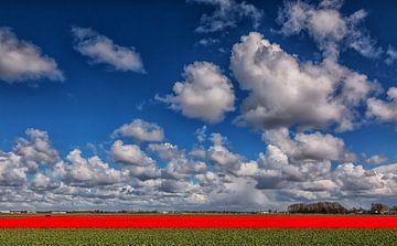 Hollandse luchten von Ilya Korzelius