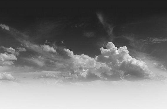 Wolken van bird bee flower and tree