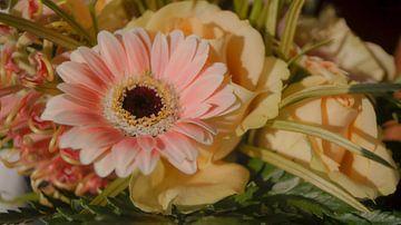 Rosa Blume von Esmée Kiezebrink