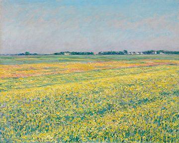 Die Ebene von Gennevilliers, gelbe Felder, Gustave Caillebotte