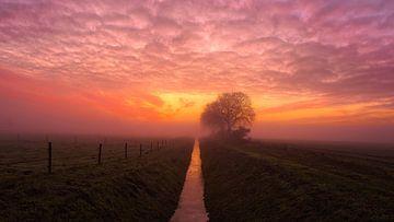 Sonnenuntergang von Anneke Hooijer