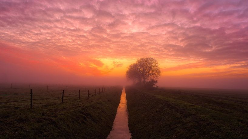 Sunset van Anneke Hooijer