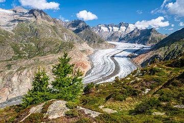 Glacier d'Aletsch en Suisse sur Achim Thomae
