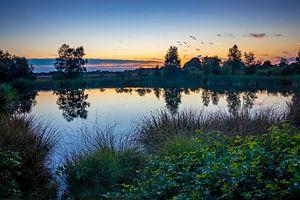 Beauty of Nature van Johan Mooibroek