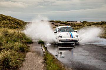 Herbie Splash! van Jeroen van Alten