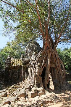 Ta Som Tempel in Angkor van Levent Weber