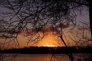 Sonnenuntergang durch die Zweige von Sandra de Heij